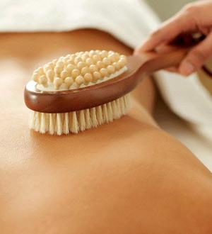 http://theparakeetslounge.com/wp-content/uploads/2012/09/Dry-Skin-Brushing.jpg
